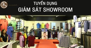 giam sat showroom