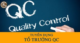 to-truong-qc